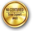 Tree Service Warren County NJ